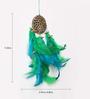 Rooh Wellness Earth Multicolour Wool Dream Catcher