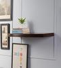 Driftingwood Brown MDF Round Single Floating Wall Shelf