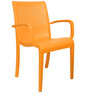 Ecstasy Elegant Chair Set of Two in Agold Colour by Cello