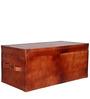 Ambrosius Trunk Box by Bohemiana