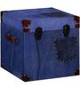 Elderage Trunk Box in Multi-Colour Finish by Bohemiana