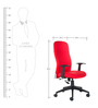 Equus Series D High Back Office Chair in Red colour by BlueBell Ergonomics