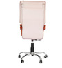 Executive  Chair in Cream Colour by Karigar