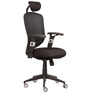 Executive Chair with Head Rest in Black Colour by Parin