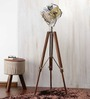 Ethnic Roots Nickel Finish Silver Metal Floor Tripod Lamp
