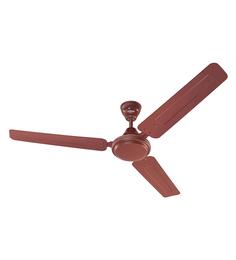 Eveready Fab 1200 mm Brown Ceiling Fan