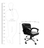 Ergonomic Low Back Office Chair in Black Colour by Adiko Systems