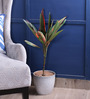 Fourwalls Red Polyester Artificial Cordyline Plant with 2 Trunks