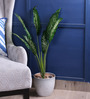 Fourwalls Green Polyester Dieffenbachia Plant with Long Leaves