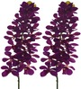Fourwalls Purple Polyethylene Artificial Mokara Orchids