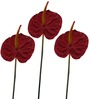 Fourwalls Red Polyethylene Artificial Anthurium Sticks