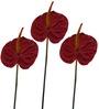 Fourwalls Red Polyethylene Artificial Anthurium Sticks