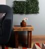 Fourwalls Green PVC Artificial Eucalyptus Bunch - Set of 5
