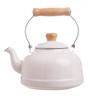 Fujihoro 2300 ML Teapot - White