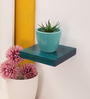 Furnicheer Turquoise Mango Wood Wall Shelf