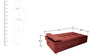 Gaiety Luxurious Sofa cum Bed in Maroon Colour by Furny