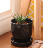 Gaia Black Cermaic Glazed Table Top Planter