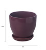 Gaia Wine Glazed Ceramic 8 x 8.5 Inch Table Top Planter with Plate