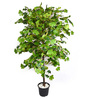 Ginni Bloom Green PVC & Synthetic Artificial Butterfly Leaf Plant