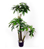Ginni Bloom Green PVC & Synthetic Artificial Fortune Tree - Set of 3