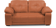 Gloria Two Seater Sofa in Tan Color by Home City