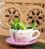 Go Hooked Cup & Saucer Planter