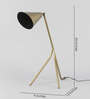 Grated Ginger Brass Iron Study Lamp