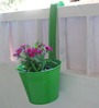 Green Gardenia Bucket With Handle (10 inch) Green Color