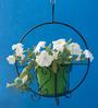 Green Gardenia Metallic Hanging Basket with Green Pot