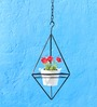 Green Gardenia Iron Hanging Triangle Stand With Metal Planter-White