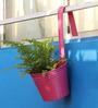 Green Gardenia Pink Metal Railing Bucket with Large Handle Planter