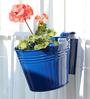 Green Gardenia Railing Bucket Large-Dark Blue