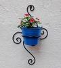 Green Gardenia Wrought Iron Wall Bracket With Light Blue Color Metal Bucket