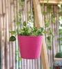 Green Girgit Pink Hanging Bucket