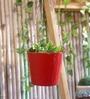 Green Girgit Red Hanging Bucket