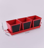 Green Girgit Herb Set Chalk Board Red Metal Planter