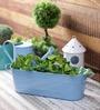 Green Girgit Blue Oval Planter