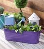 Green Girgit Purple Oval Planter
