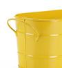 Green Girgit Yellow Oval Planter