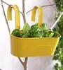 Green Girgit Yellow Oval Railing Planter