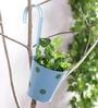 Green Girgit Light Blue Polka Dots Railing Planter Pot