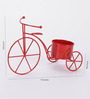 Green Girgit Red Metal Cycle Planter