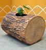 Greymode Veambu Brown Planter