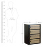 Elicia Chest Of Drawers in Tropicana Walnut & Belgian Oak Finish by CasaCraft