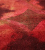 HDP Orange Wool 80 x 56 Inch Indian Hand Knotted Over Dye Carpet