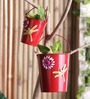 Height of Designs Red Iron Planter - Set of 3