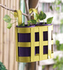 Height of Designs Yellow and Blue Iron 3-piece Basket with Planter Set