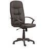 High Back Ergonomic Chair in Black Colour by Parin