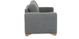 Iganzio Two Seater Sofa in Platinum Grey Colour by Casacraft