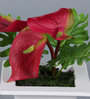 Importwala Pink Iron Artificial Cala Lily Flowers with Pot
